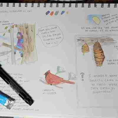 I-Wonder-Nature-Journal-Page