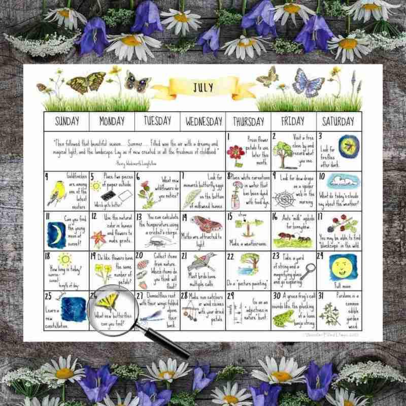 July Nature Calendar 2021