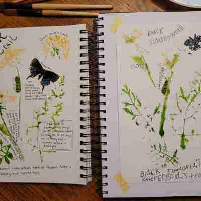 Queen Anne's Lace Prints Journal Pages
