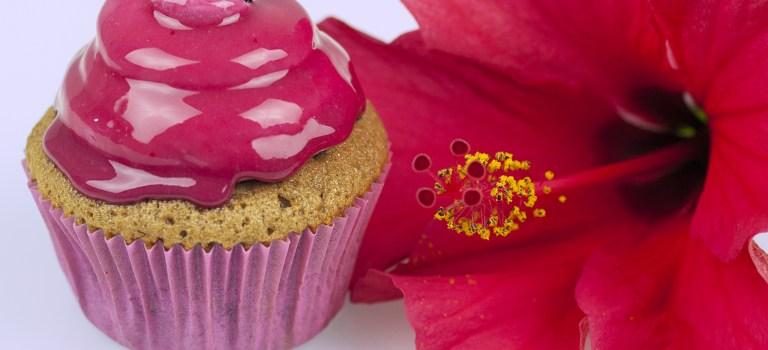 """Cupcake des Monats: """"50 shades of Pink""""-Cupcake"""