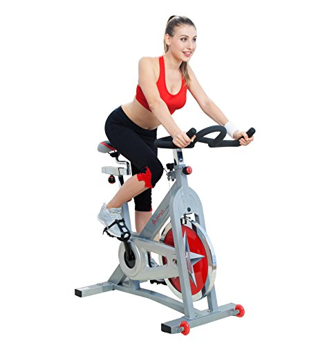 Indoor Cycling Sunny Health Fitness