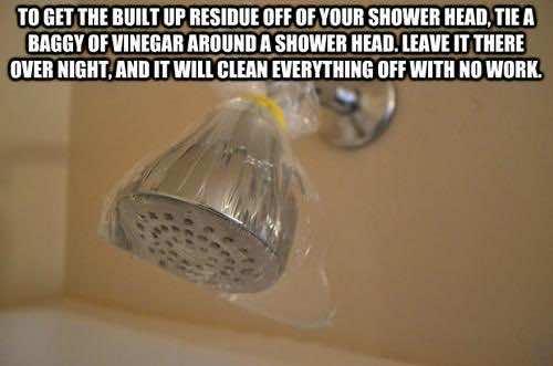 12. Showerhead and Vinegar