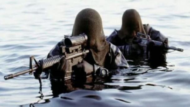 Danish Frogman Corps