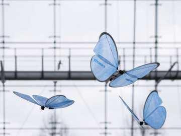 Festo Creates Robotic Insects 10
