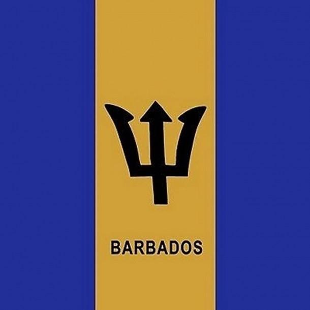 Barbados flag  (1)