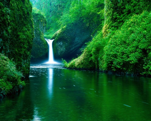 nature wallpapers 32