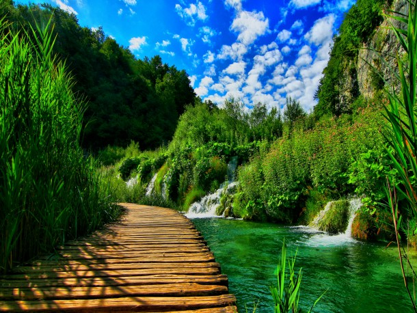 nature wallpapers 8