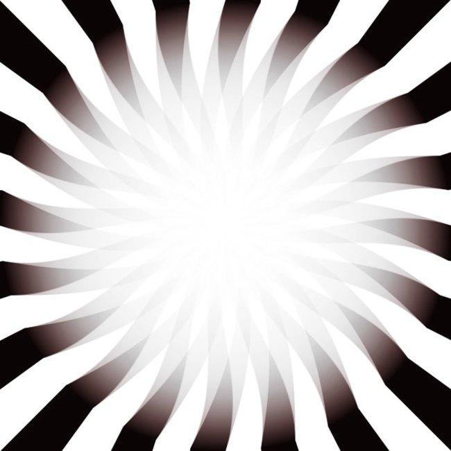 14 optical illusions11