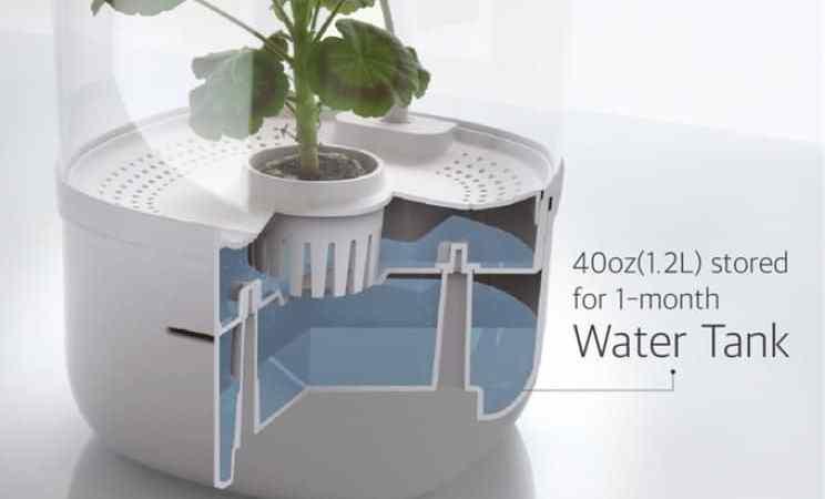 This Smart Indoor Planter Lets You Enjoy Gardening Indoors