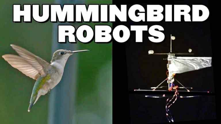 Hummingbird Robot Can Hover & Fly Like An Actual Hummingbird