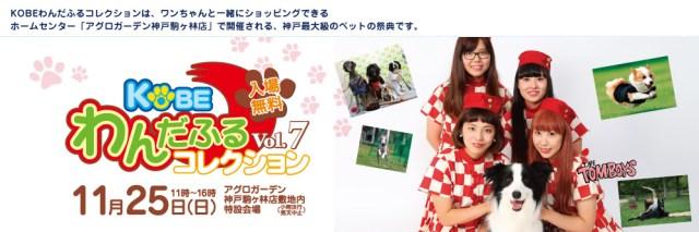 KOBEわんだふるコレクション Vol.7 11月25日(日) 11時〜16時 入場無料