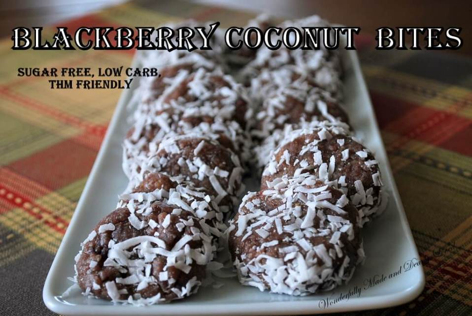 Blackberry Coconut Bites