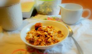 Pumpkin Crumble Cereal (THM S, Sugar Free, Low Carb)