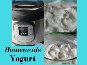Homemade Yogurt from My Instant Pot (THM FP)
