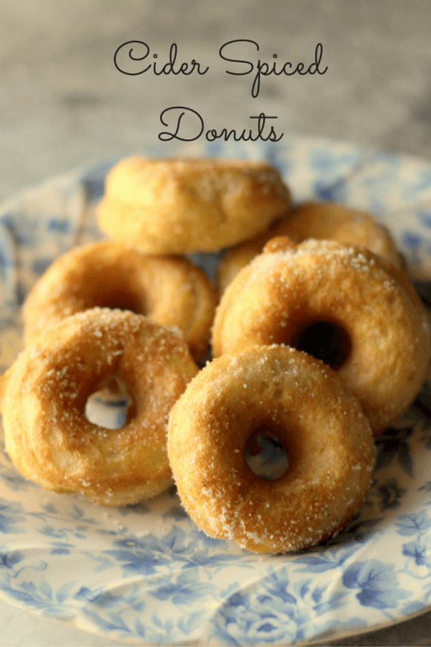 These Cider Spiced Donuts are a great Fuel Pull breakfast or snack while following Trim Healthy Mama