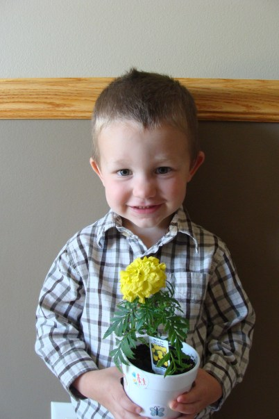 Garrett - flower