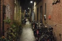 Amsterdam, 2017