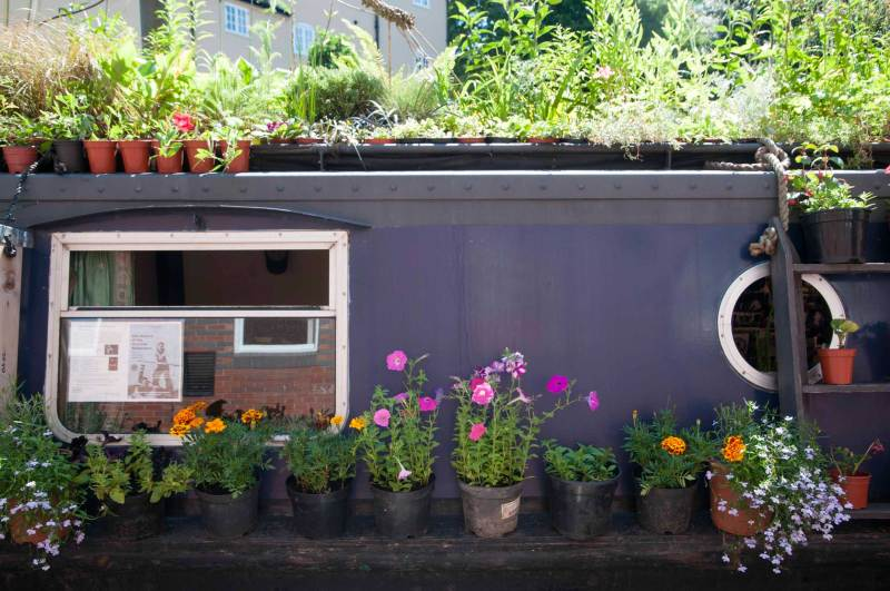 Freelance gardening journalist Alice Whitehead explores growing on canal boats