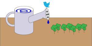 social media watering can