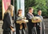 The Toad Choir
