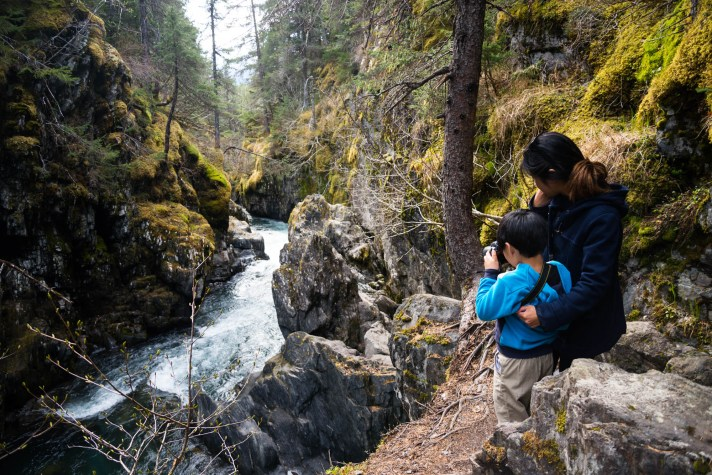 A young mother holds her 5 year old child as he photographs a river in a dense alaskan forest near Girdwood.