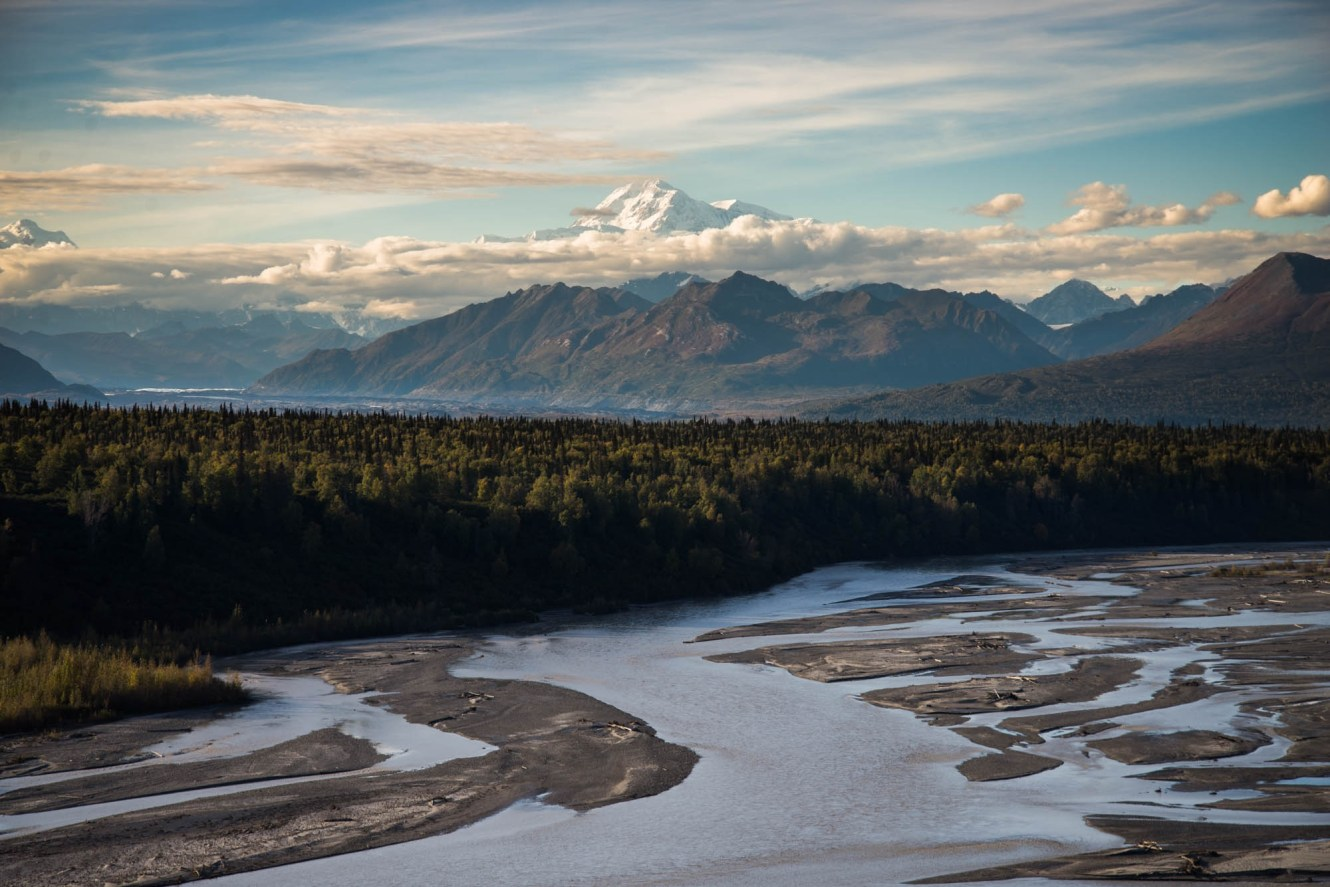 Denali peak is seen towering above a thin layer of clouds. In the foreground, the Susitna river flows many paths alongside a dense forest that extends as far as can see.
