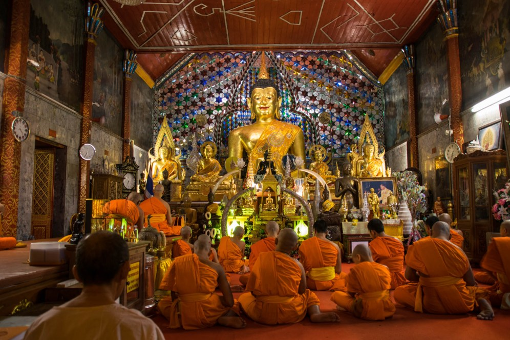 A group of orange robe earing buddhist monks are seen from behind meditating in front of a golden Buddah statue.