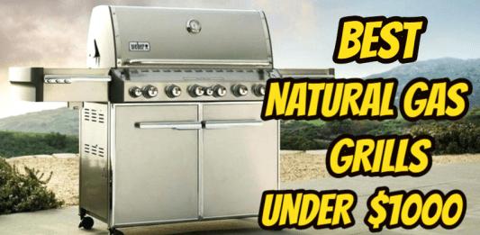 Best Natural Gas Grill under $1000