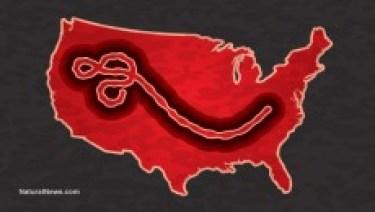 Ebola wonderside