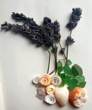sea glass, shells and lavender