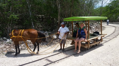 This horse-drawn cart carried us to the underground cenotes