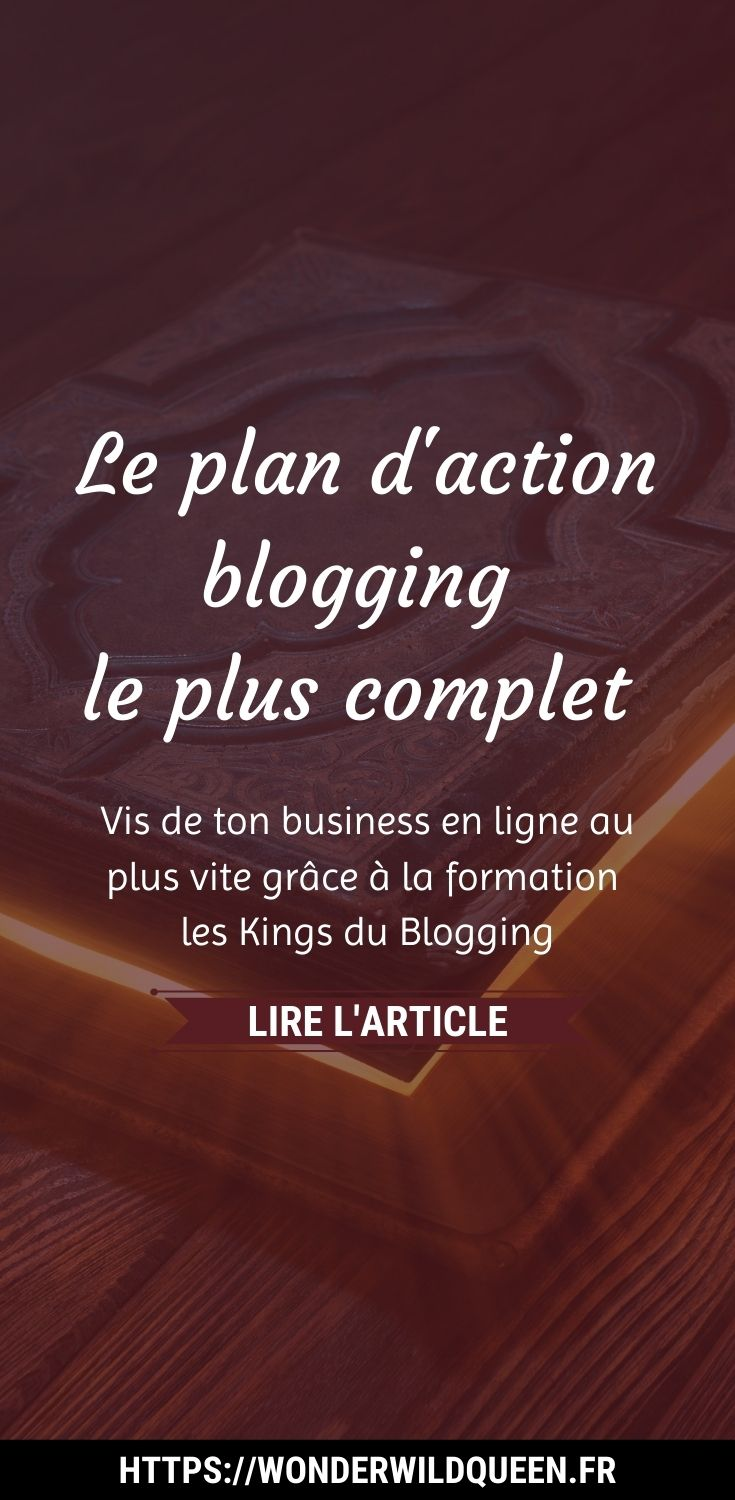 le plan d'action le plus complet #blogging #entrepreneurduweb #businessenligne