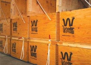 Wonder-Worman-Worm-Bins