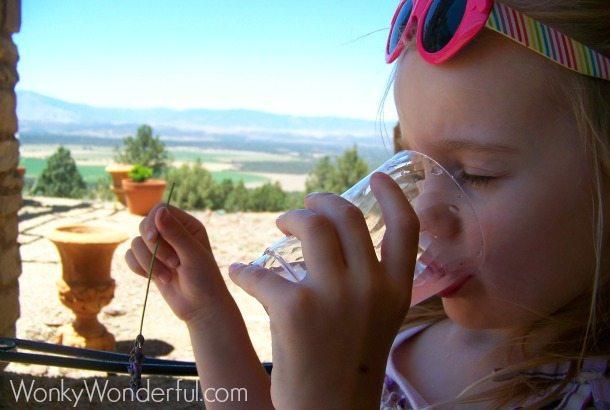 Lavender Lemonade - wonkywonderful.com