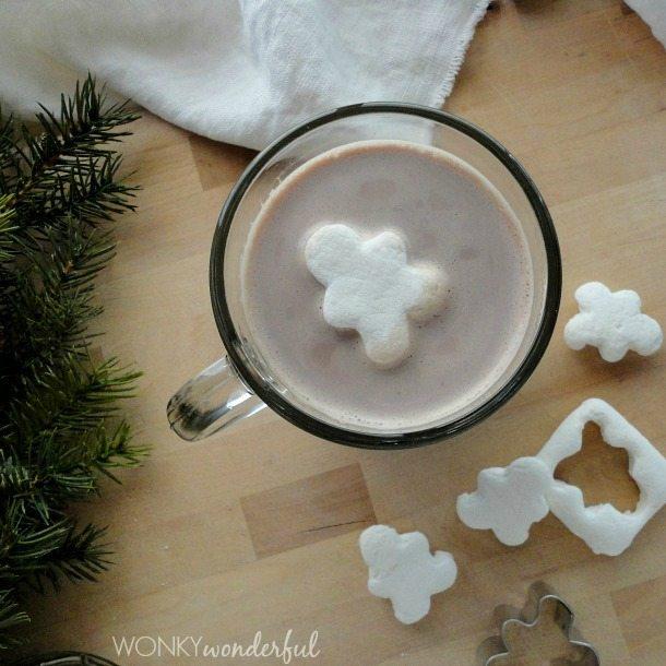 Gingerbread Spiced Hot Cocoa Mix Recipe - Homemade Hot Chocolate - wonkywonderful.com