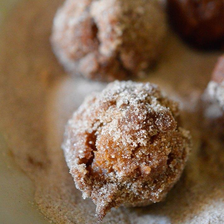 Cinnamon Sugar Fried Doughnut