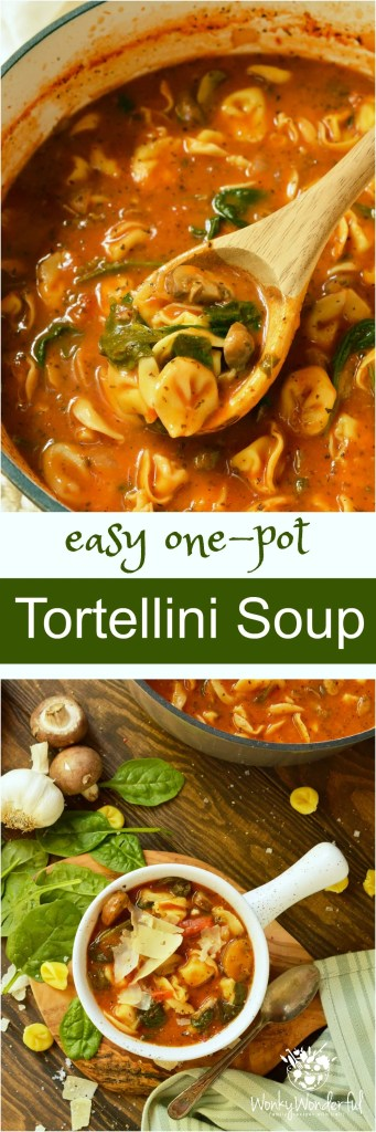 Get a warm comforting dinner on the table quickly with this one pot meal. This Easy Tortellini Soup Recipe takes just a few simple ingredients to make a hearty, nutritious soup!