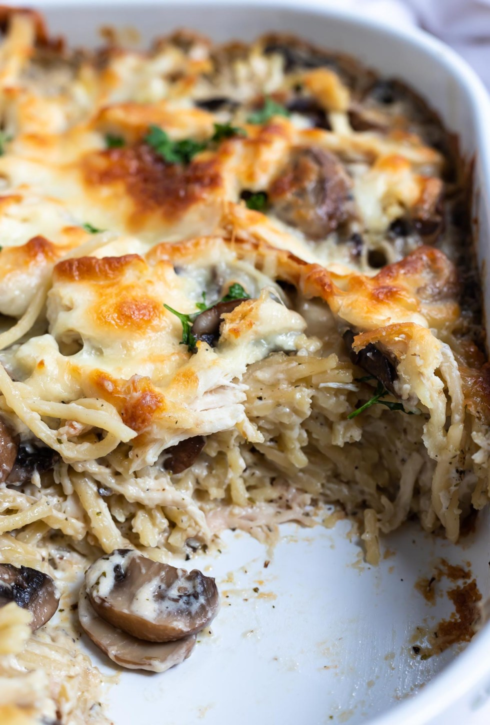 Chicken Tetrazzini in casserole dish