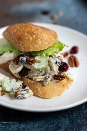 cranberry chicken salad sandwich