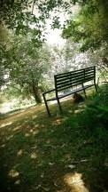 clutz under the bench