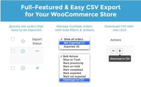 WooCommerce Order/Customer CSV Export