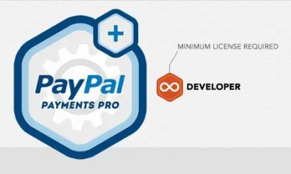 Rocket Genius Gravity Forms Paypal Payments Pro Addon