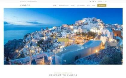 CSS Igniter Andros WordPress Theme