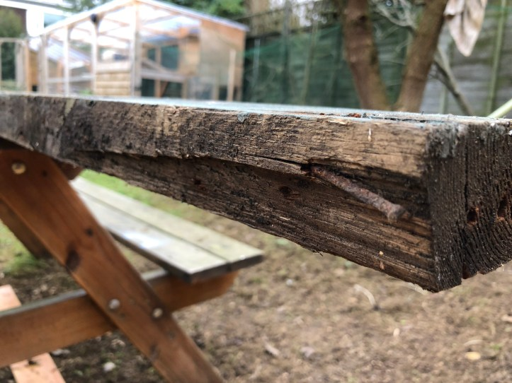 rotten timber