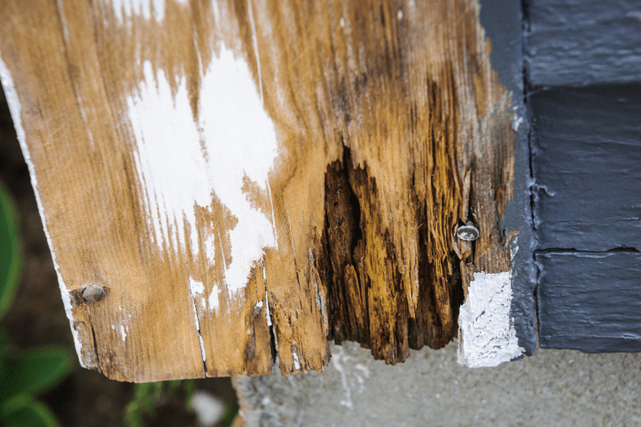 Can rotted wood be repaired?