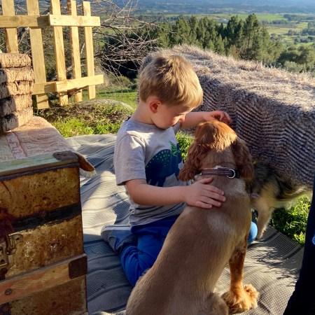 children pets dog