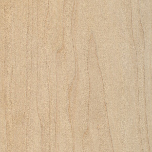 Hard Maple  The Wood Database  Lumber Identification