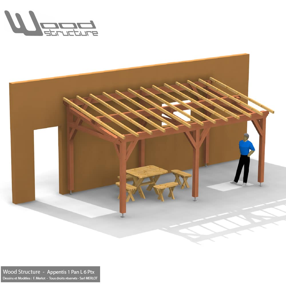 Appentis 1 Pan L 6 Poteaux 6x3 Wood Structure Charpente Bois