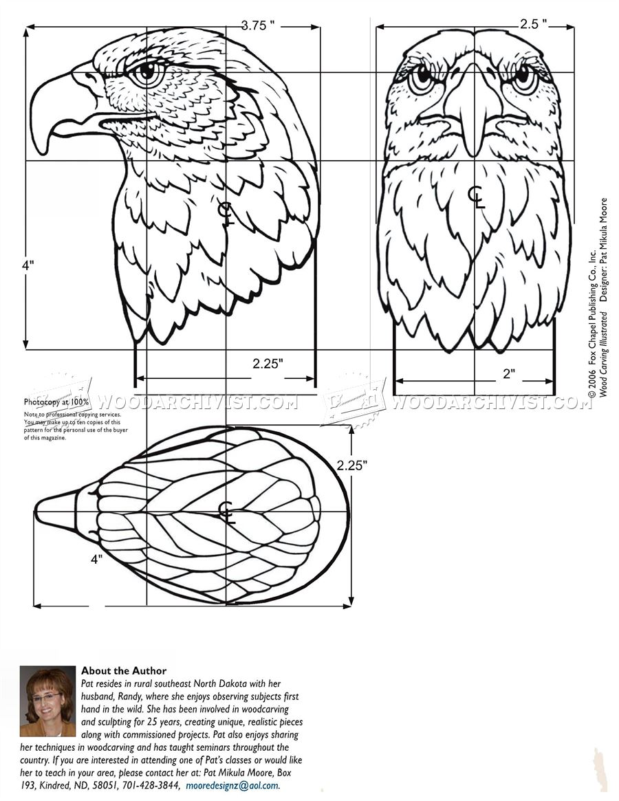 Carving Eagle Bust • WoodArchivist