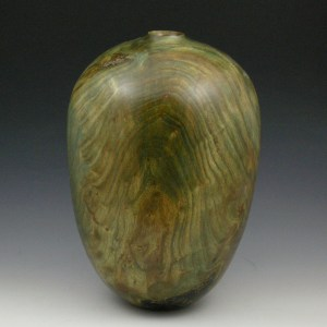 Bronzed Elm